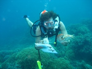 Gregory Barord diving with two nautiluses (Nautilus pompilius) in Panglao, Philippines in 2011 during one of the first, if not the first, in situ behavioral experiments. (Photo by Anthony Ilano)